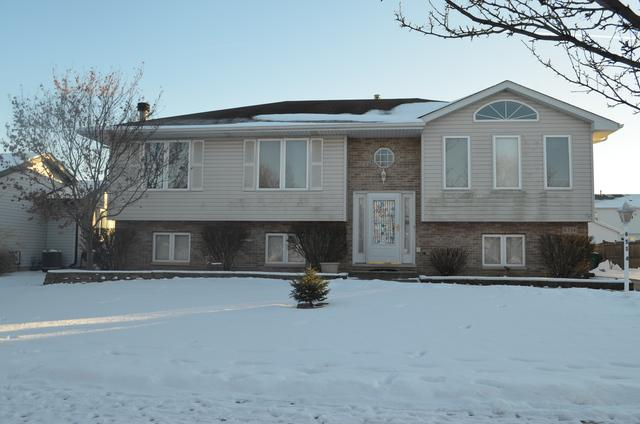 6514 Whalen Lane, Plainfield, IL 60586 (MLS #09924683) :: Lewke Partners