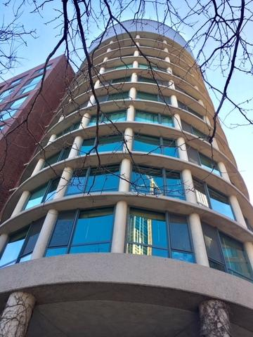 440 N Mcclurg Court 1004-S, Chicago, IL 60611 (MLS #09924976) :: Domain Realty