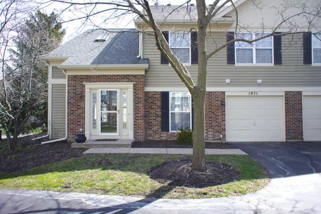 1071 Quaker Hill Court, Elgin, IL 60120 (MLS #09925839) :: Lewke Partners