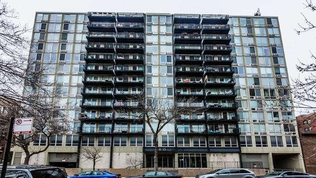 450 W Briar Place 4G, Chicago, IL 60657 (MLS #09926944) :: The Perotti Group
