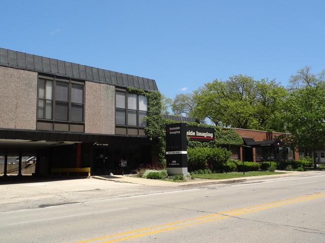 400 Higgins Road, Park Ridge, IL 60068 (MLS #09927245) :: Lewke Partners