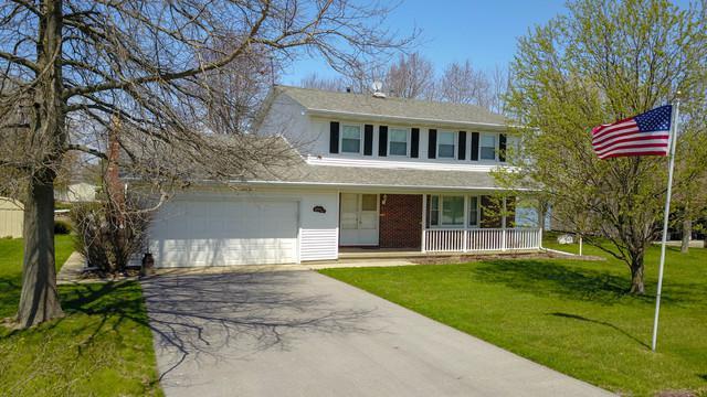 113 Pima Lane, Loda, IL 60948 (MLS #09927678) :: Ryan Dallas Real Estate