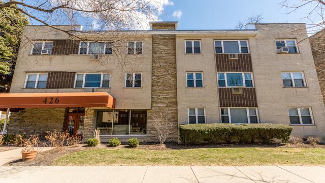 426 S Lombard Avenue #303, Oak Park, IL 60302 (MLS #09928073) :: Lewke Partners