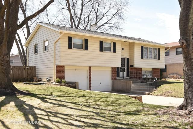 1109 E Linden Lane, Mount Prospect, IL 60056 (MLS #09928220) :: The Dena Furlow Team - Keller Williams Realty