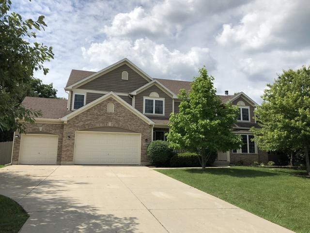 1360 Chadwick Court, West Dundee, IL 60118 (MLS #09929858) :: The Dena Furlow Team - Keller Williams Realty