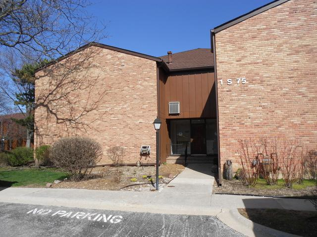 1S075 Spring Road 1C, Oakbrook Terrace, IL 60181 (MLS #09931162) :: Ani Real Estate