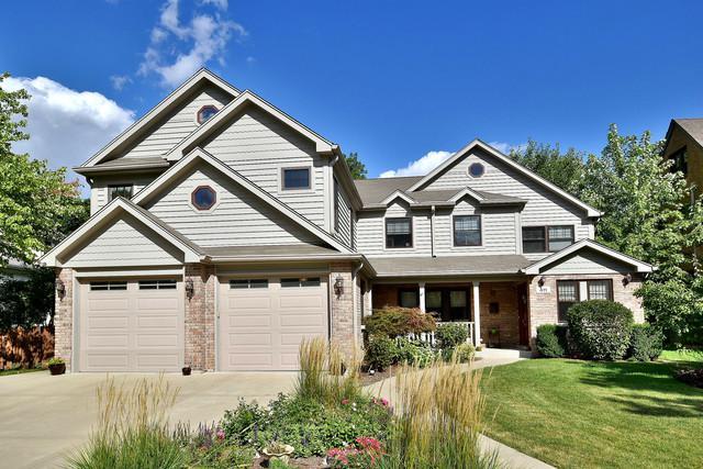 411 S Arlington Avenue, Elmhurst, IL 60126 (MLS #09934389) :: Lewke Partners