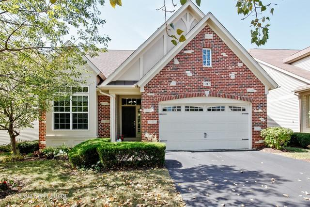 1747 Briarheath Drive, Aurora, IL 60505 (MLS #09935946) :: The Wexler Group at Keller Williams Preferred Realty