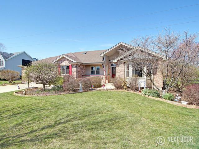 16232 Vintage Drive, Plainfield, IL 60586 (MLS #09936418) :: The Jacobs Group