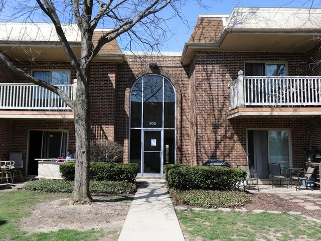 906 W Alleghany Drive 2D, Arlington Heights, IL 60004 (MLS #09936779) :: Lewke Partners