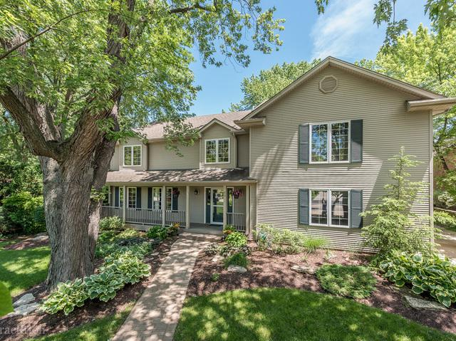 3803 Sterling Road, Downers Grove, IL 60515 (MLS #09943671) :: The Wexler Group at Keller Williams Preferred Realty