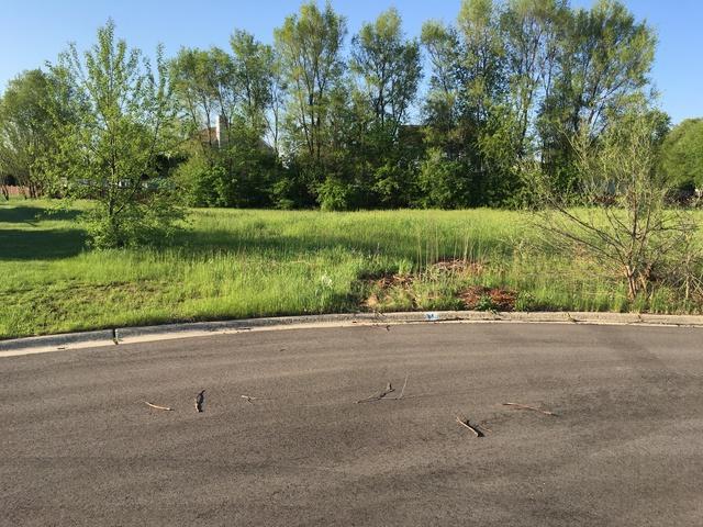 Lot 15 Whitetail Drive, Marengo, IL 60152 (MLS #09945065) :: The Mattz Mega Group