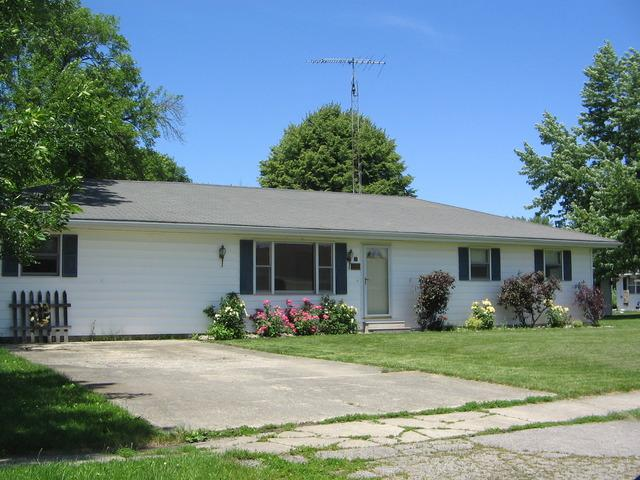 205 S Pine Street, Buckley, IL 60918 (MLS #09945307) :: The Dena Furlow Team - Keller Williams Realty