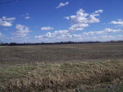 000 N 4000 Road, Essex, IL 60935 (MLS #09945809) :: The Dena Furlow Team - Keller Williams Realty