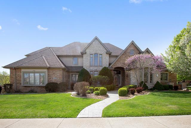 23054 Sun River Drive, Frankfort, IL 60423 (MLS #09947170) :: Lewke Partners