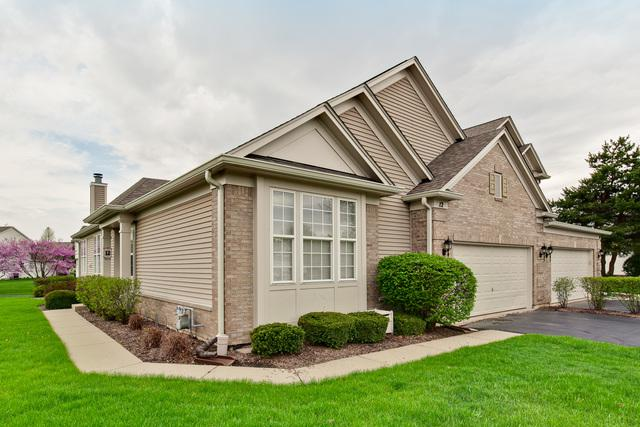 12 Tiverton Court #12, Algonquin, IL 60102 (MLS #09947643) :: Lewke Partners
