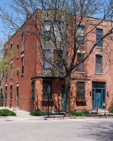 439 N Leavitt Street #1, Chicago, IL 60612 (MLS #09948061) :: Domain Realty