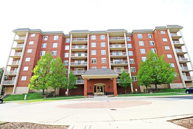 8400 Callie Avenue #504, Morton Grove, IL 60053 (MLS #09948186) :: Domain Realty