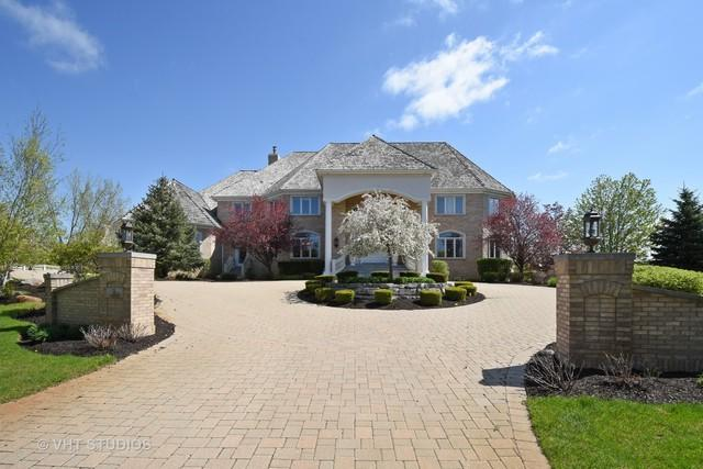 3 Saucer Circle, South Barrington, IL 60010 (MLS #09952950) :: The Jacobs Group