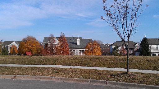 5 Springbrook Court, Algonquin, IL 60102 (MLS #09953215) :: Ryan Dallas Real Estate