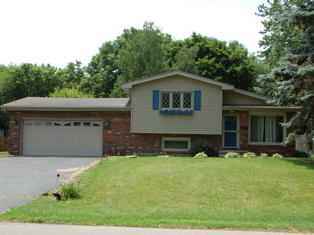 2746 Lancaster Drive, Joliet, IL 60433 (MLS #09954830) :: Angela Walker Homes Real Estate Group