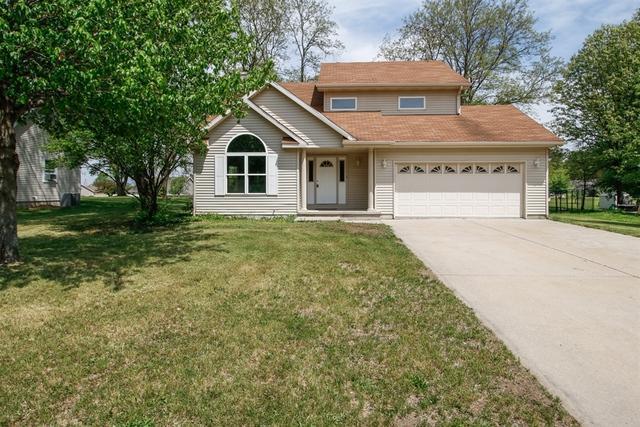 255 Burr Ridge Road, Essex, IL 60935 (MLS #09955423) :: The Dena Furlow Team - Keller Williams Realty