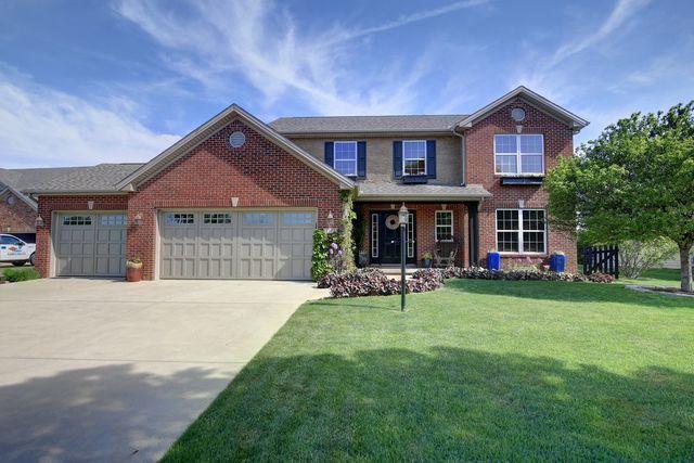 1508 Beaver Lake Drive, Mahomet, IL 61853 (MLS #09955471) :: Ryan Dallas Real Estate
