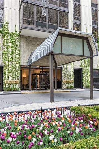 100 E Bellevue Place 8E, Chicago, IL 60611 (MLS #09955837) :: Property Consultants Realty