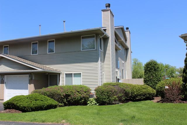 481 River Bend Road #107, Naperville, IL 60540 (MLS #09956888) :: Ryan Dallas Real Estate