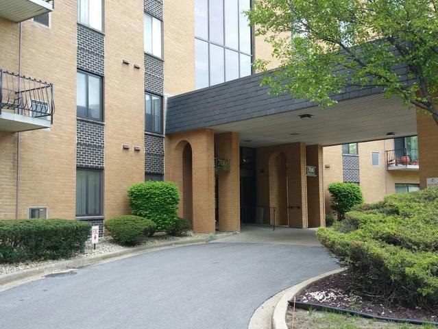 700 N Bruce Lane #115, Glenwood, IL 60425 (MLS #09956891) :: Ryan Dallas Real Estate