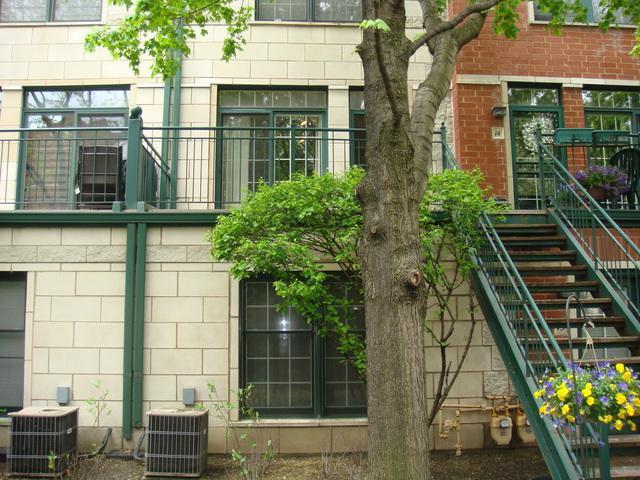 1812 S Federal Street G15, Chicago, IL 60616 (MLS #09957121) :: Helen Oliveri Real Estate