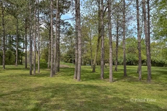 0 W Hillside Road, Crystal Lake, IL 60012 (MLS #09957723) :: Lewke Partners