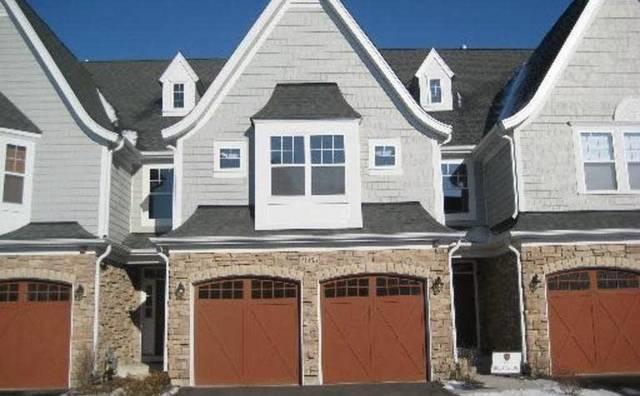 20485 N Audrey Lane, Deer Park, IL 60010 (MLS #09958062) :: The Jacobs Group