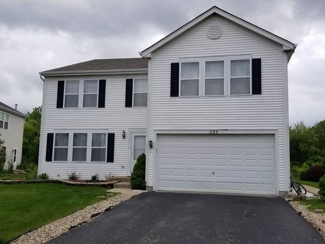 1125 Butterfield Circle W, Shorewood, IL 60404 (MLS #09959597) :: Lewke Partners