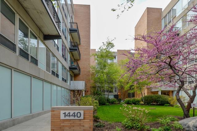 1440 S Michigan Avenue #217, Chicago, IL 60616 (MLS #09960300) :: Domain Realty