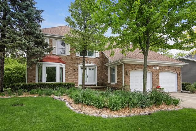 2404 Arlingdale Drive, Palatine, IL 60067 (MLS #09960813) :: The Jacobs Group