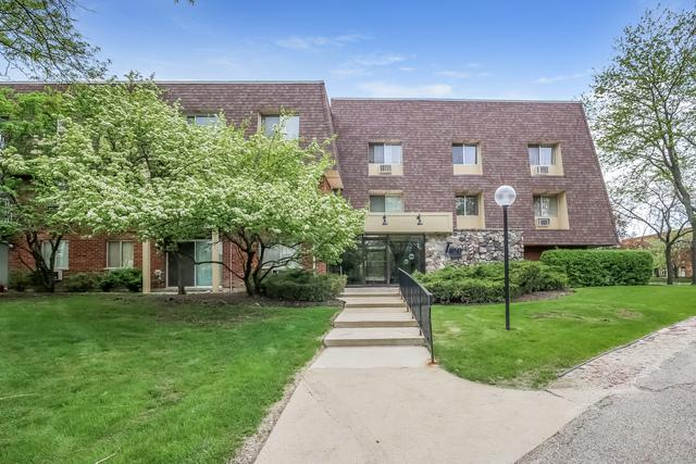 2 Villa Verde Drive #220, Buffalo Grove, IL 60089 (MLS #09960833) :: The Schwabe Group