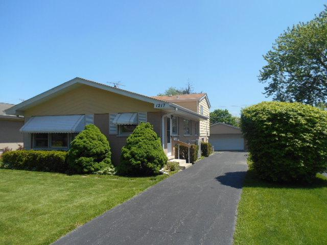 1217 S Chestnut Avenue, Arlington Heights, IL 60005 (MLS #09960988) :: The Schwabe Group