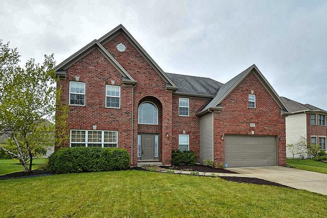 24233 W Prairie Grove Drive, Plainfield, IL 60585 (MLS #09961029) :: The Jacobs Group