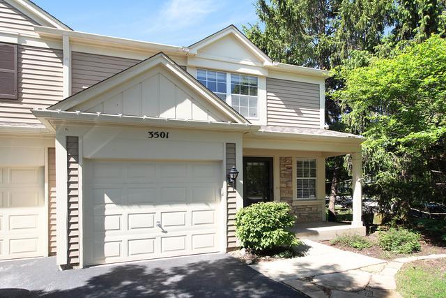 3501 Saint Annes Court, Aurora, IL 60504 (MLS #09962466) :: Key Realty