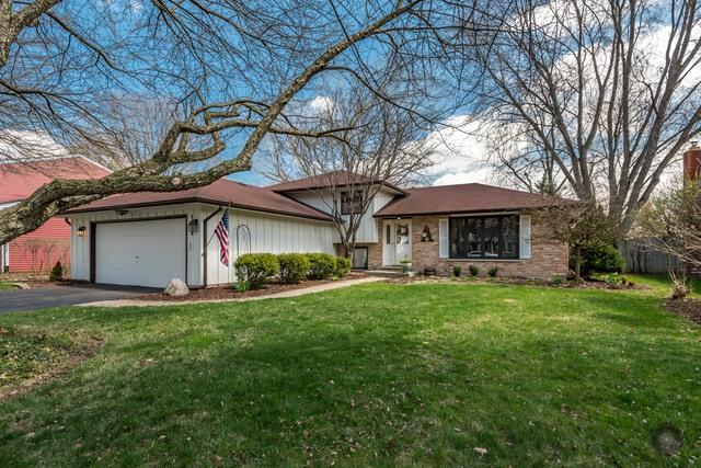 1628 Verdin Lane, Naperville, IL 60565 (MLS #09962650) :: Lewke Partners