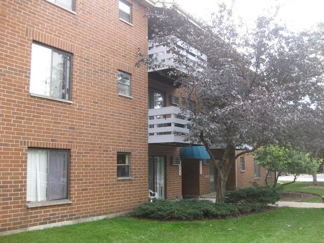 1335 N Winslowe Drive #102, Palatine, IL 60074 (MLS #09963080) :: The Perotti Group