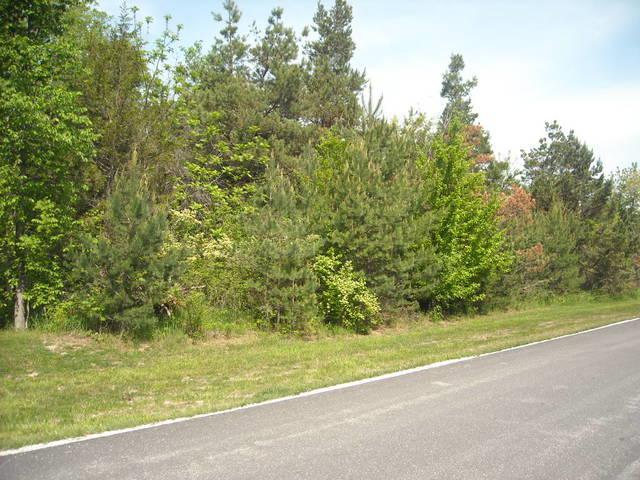 Lot 23 S Pinewood Lane, Monee, IL 60449 (MLS #09963345) :: The Saladino Sells Team
