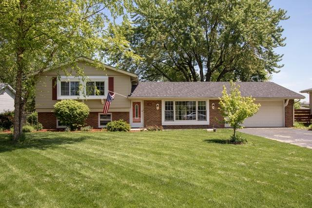 905 Birchwood Drive, Aurora, IL 60505 (MLS #09963364) :: Angie Faron with RE/MAX Ultimate Professionals