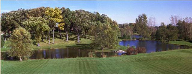 Lot 21 Savanna Lakes Court, Elgin, IL 60123 (MLS #09964271) :: Suburban Life Realty
