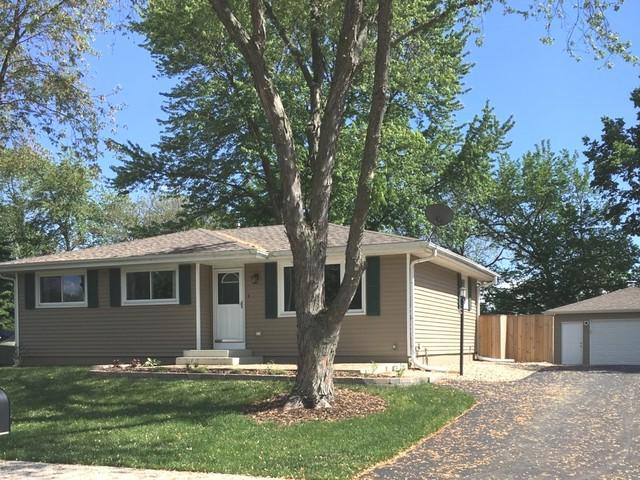 110 Bush Drive, Elwood, IL 60421 (MLS #09964664) :: Ani Real Estate