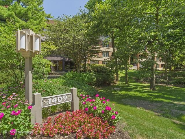 1409 Burr Oak Road 302A, Hinsdale, IL 60521 (MLS #09965875) :: Domain Realty