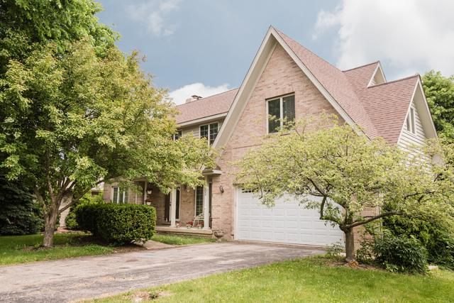 1202 Carey Drive, Mchenry, IL 60050 (MLS #09966806) :: The Dena Furlow Team - Keller Williams Realty