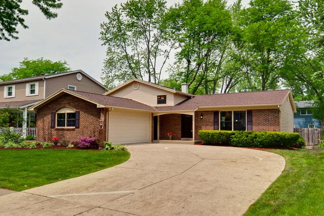 222 Selwyn Lane, Buffalo Grove, IL 60089 (MLS #09968637) :: The Dena Furlow Team - Keller Williams Realty