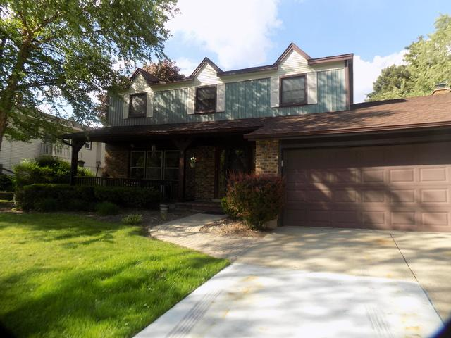9 Charles Court, Buffalo Grove, IL 60089 (MLS #09969042) :: The Dena Furlow Team - Keller Williams Realty